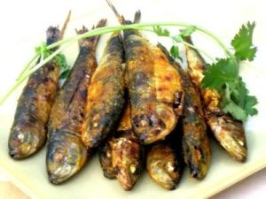 Nutritious, delicious and sustainable sardines